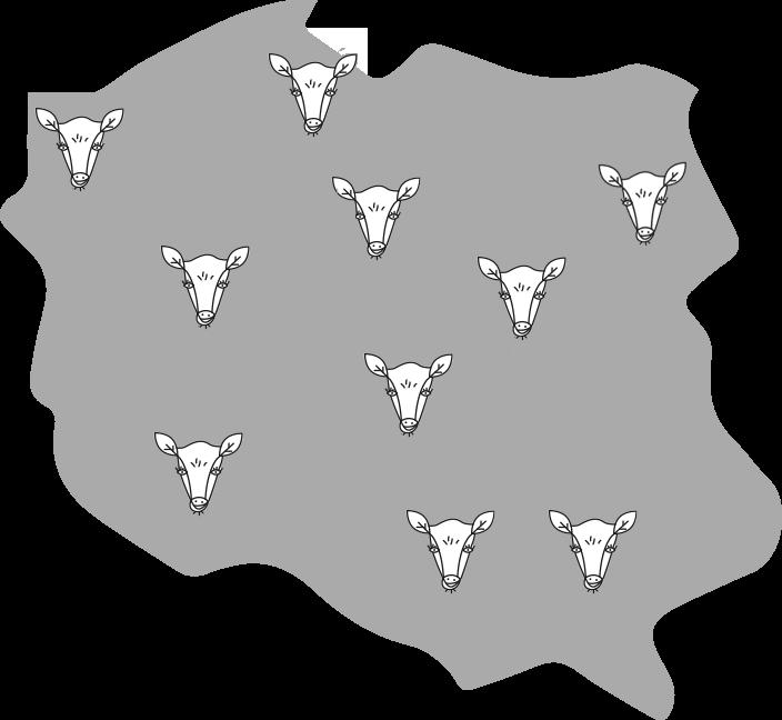 Mapa Krowarzywa w Polsce.